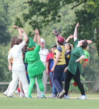 Heroes take a wicket